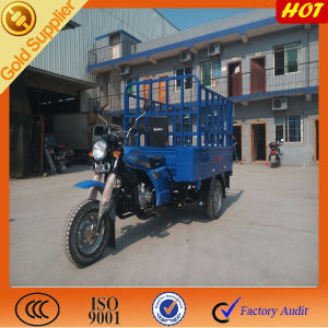 Hot Saleing for Cargo Truck in Afirca pictures & photos
