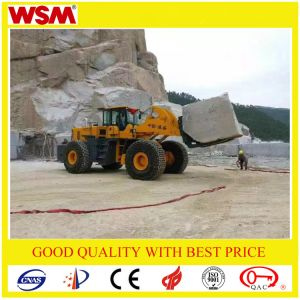 Top Quality Diesel Forklift Truck with Best Price pictures & photos