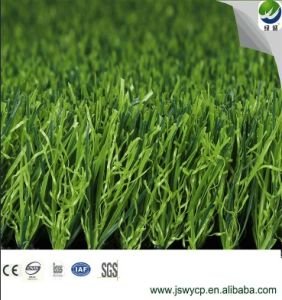 Landscape Leisure Artificial Synthetic Fake Grass Turf Lawn for House pictures & photos
