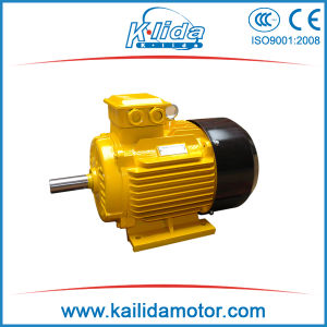 Single / Three Phase Electric AC Engine pictures & photos