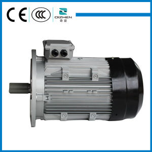 B5 MS Series Induction Motor with Aluminium Body pictures & photos