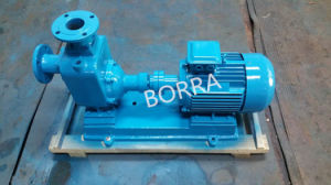 Self Priming Electric Water Pump pictures & photos