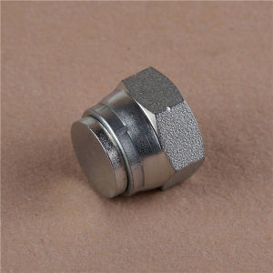 Bsp Female 60 Cone Zinc Plated Plug Hydraulic Fitting pictures & photos