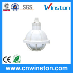 Safety Increased Explosion Proof Corrosion Proof Lamp (BGL-200S) pictures & photos