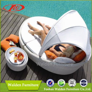 Outdoor Rattan Lounger Set (DH-8885) pictures & photos