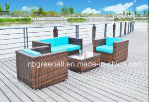 Patio Outdoor Sofa Sets Rattan/Garden Furniture pictures & photos