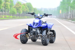 Best Selling 50cc ATV Quads Bike (AT0501) pictures & photos