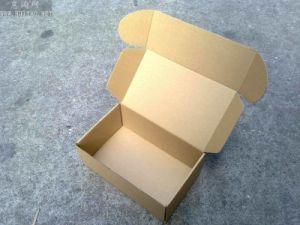 Can Folding Shipping Corrugate Carton Box pictures & photos