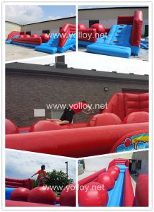Inflatable Big Baller for Party Event pictures & photos