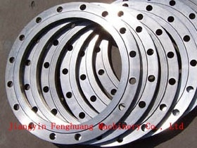 Widely Cast Steel Forged Flange pictures & photos