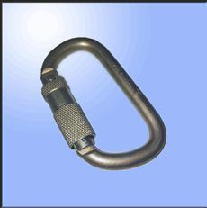 Type D Stainless Steel Spring Screwgate Locking Screw-Lock Carabiner pictures & photos
