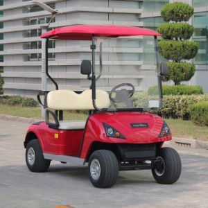 CE Approved 2 Seater Electric Golf Cart Manufacturer China Dg-C2 pictures & photos