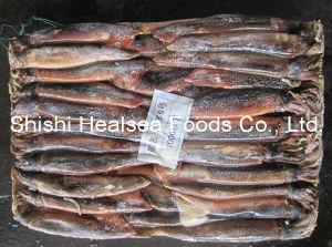 Smaller Illex Squid (100g below) pictures & photos
