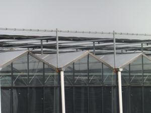UV Coating Transparant Polycarbonate Sheet Greenhouse pictures & photos