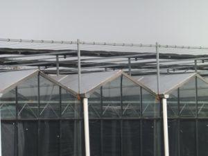 UV Coating Transparant Polycarbonate Sheet Greenhouse