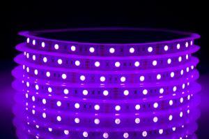5050 LED Strip 60LED RGB Color Manufacturer pictures & photos