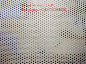 Lower Price Perforated Metal pictures & photos