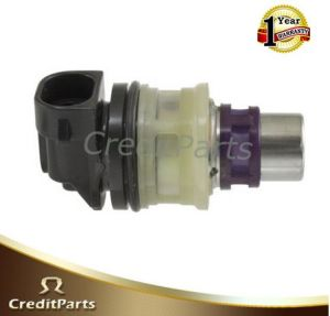 Fj10042 Fj10045 Auto Part Fuel Injector pictures & photos