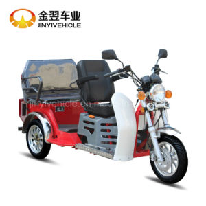 Passenger Tricycle for Handicapped Driver pictures & photos