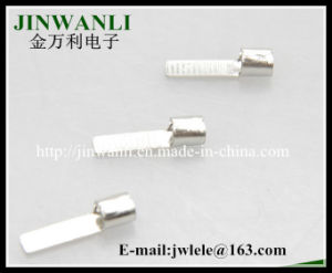 Dbn Non-Insulated Electrical Blade Bare Copper Naked Terminals with Chip-Shaped pictures & photos