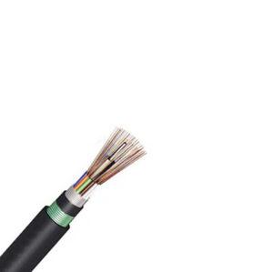 4 Fibers Single-Mode Double Armors Double Jackets Flame-Retardant Central Loose Tube Cable-Gyftza53 pictures & photos
