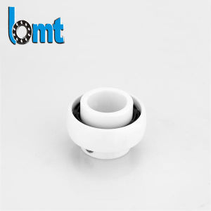 6*19 Deep Groove Ceramic Ball Bearings 698 pictures & photos