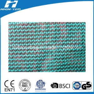Mono Filament Green Color Scaffold Net (HT-SN-005) pictures & photos