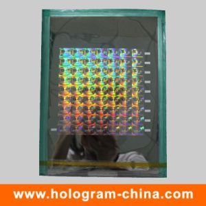 Custom 2D/3D Laser Security Holographic Master pictures & photos