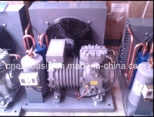 Semi-Hermetic Copeland Condensing Unit (Dll-301) pictures & photos