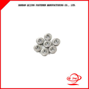 China High Quality Hexagonal Flange Steel Lock Nut pictures & photos