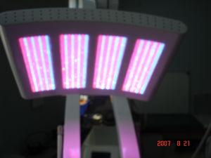 PDT/LED Light/ LED Phototherapy Skin Rejuvenation Beauty Equipment pictures & photos