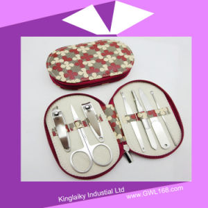 Nail Manicure Set Nail Beauty Nail Set for Gift (BH-031) pictures & photos