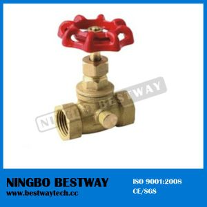 Hot Sale Brass Boiler Drain Valve with Good Quality (BW-S25) pictures & photos