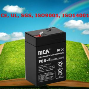 Battery Reconditioning Lead Acid Battery Maintenance 6V pictures & photos