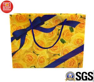 PVC/Pet Shopping Bag, Transparent Plastic Bag, Printed Plastic Carrier Bag pictures & photos