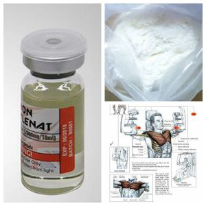 High Purity Anabolic Raw Steroid Powder Boldenone Acetate Raw Material pictures & photos