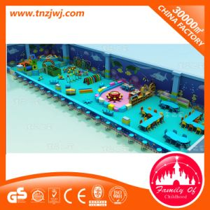 New Arrival Funny Ocean Castle Kids Indoor Playground Equipment for Sale pictures & photos