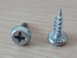 Pan Frame Head Self Tapping Screw pictures & photos