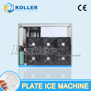 5tons Capacity Plate Ice Machine Factory China pictures & photos