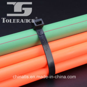 Professional Supplier Nylon Cable Tie Wrap with Strong Tensile Strength pictures & photos