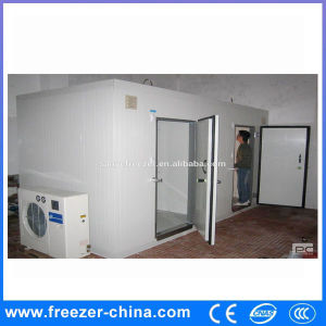 China Factory Produce Best Selling Cold Room with Ce Certification pictures & photos
