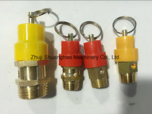 All Kinds of Brass Safety Valves pictures & photos