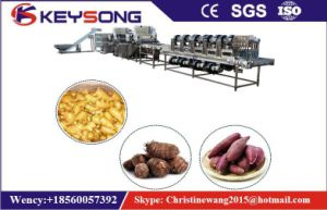 Large Scale Vegetable Fruit Food Washing Machine pictures & photos