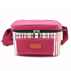 Factory Supplier DIY High Quality Aluminum Cooler Bags pictures & photos