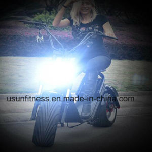 Two Wheels New Design City Coco with Removable Battery pictures & photos