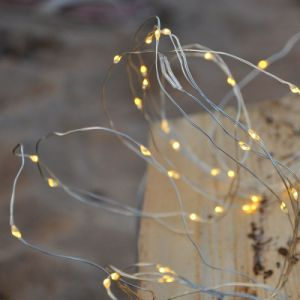 Plug in Copper Silver Wire Seed Micro LED 8 Branch Lights 160 LEDs Warm White pictures & photos