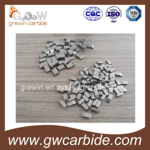 Tungsten Carbide Saw Tips and Various Sizes pictures & photos
