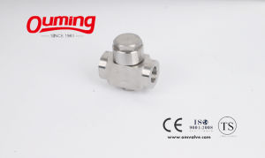 Threaded Stainless Steel China Check Valve pictures & photos