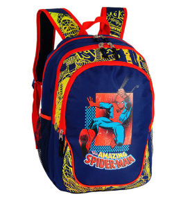 Cool Boys Trolley Bags and Athletic Bags for School (DSC01491-DSC01495) pictures & photos