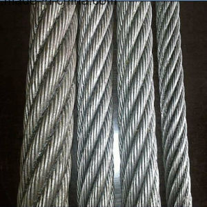 China Factory 1X7 Galvanized Steel Wire Rope/Steel Cable Rope (XM-020) pictures & photos